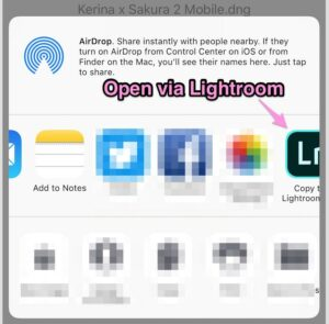How to Get Free Lightroom Presets on Mobile - Kerina Mango