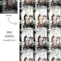 Kerina Wang Pro Series Presets